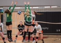 Gallery: Volleyball Lynden @ Blaine